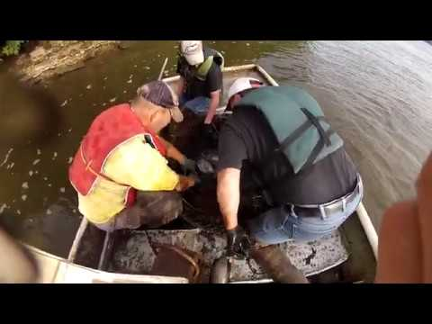 Catfish Charlie's - Commercial Fishing On The Mighty Mississippi