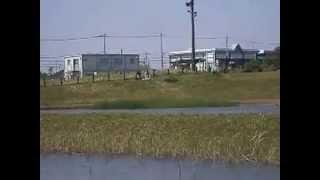 プーさんカメラLIVE中継 大柏川第一調整池からの水の眺め(船橋側から)