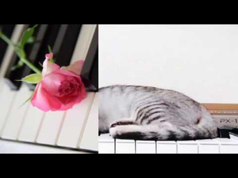 【ピアノ】 明日、春が来たら/松たか子 (歌詞:字幕SUB対応/カラオケ)
