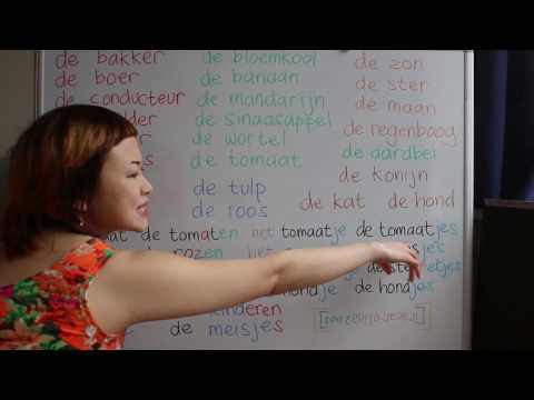 LEARN DUTCH/ NETHERLANDS & INDONESIAN/ BAHASA INDONESIA [IN