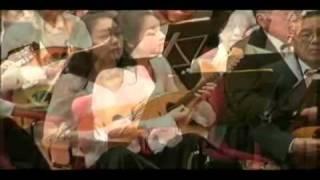 喜歌劇 「天国と地獄」序曲  マンドリン Heaven and Hell - wmv 天国と地獄 検索動画 48