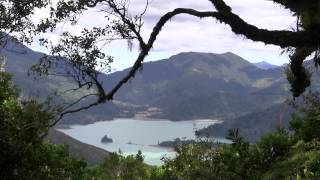 New Zealand Marlborough Sounds