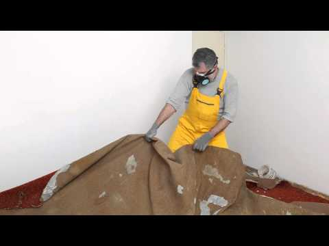 Winter Park Fl Mold Inspection Service 407-218-5862
