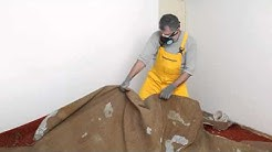 Winter Park Fl Mold Inspection Service 407-218-5862