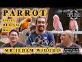 Melihat Koleksi Parrot Jipang Birdfarm Mutasi Lovebird Semua Ada Feat Mr Ilham Widodo  Mp3 - Mp4 Download