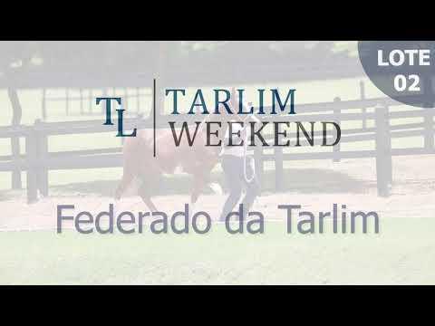 Lote 02 - Federado da Tarlim (Potros Tarlim)