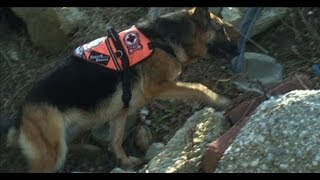 The Long Island K-9 Search and Rescue Team at their Training Facility