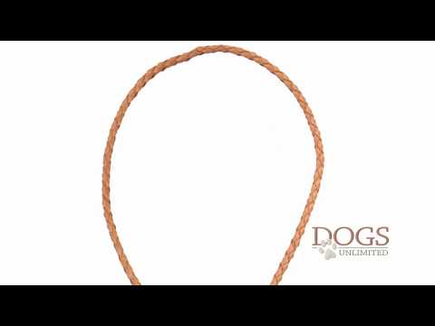 sportdog,-braided-leather-whistle-lanyard
