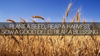 Plant A Seed, Reap A Harvest; Sow A Good Deed, Reap A Blessing