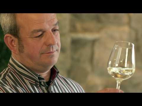 Weingut Michael Schneider, Boppard