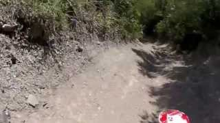 piranha daytona 4v anima 190cc trail riding