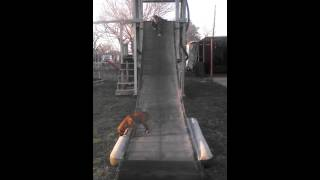 Homemade Slide