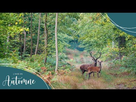 L'automne dans l'Oise - Oise Tourisme - Picardie