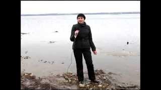 видео Галичское озеро: проект спасения
