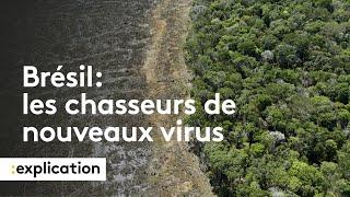 Des chasseurs de virus inconnus en Amazonie