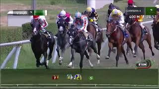 Vidéo de la course PMU PREMIO IN THE GROUND
