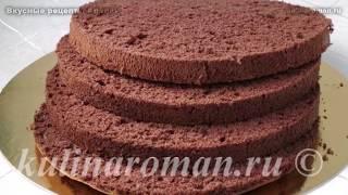 Шоколадный бисквит для торта. Рецепт вкусного шоколадного бисквита