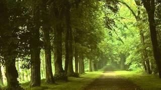 """Henry Cowell: Symphony No.4 """"Short Symphony"""" (1946)"""