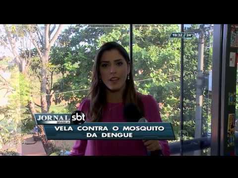Vela contra o mosquito da dengue