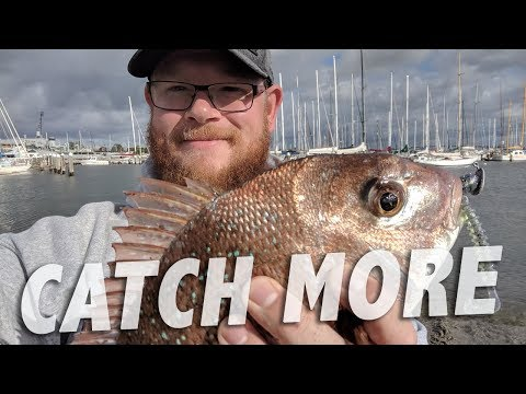6 FISHING TIPS From LAND FISH TV (Fishing Melbourne, Australia)