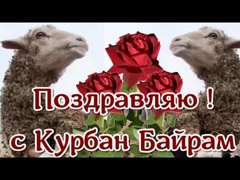 КУРБАН БАЙРАМ! С праздником Курбан Байрам поздравляю мусульман ! Красивая видео открытка