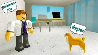 : a simulator Simulator Roblox Vet doctor treating animals.