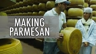 How to Make Parmesan - Parmigiano-Reggiano Cheese Making in Italy   Walks of Italy