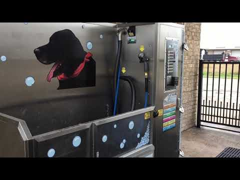 A Car Wash For Dogs ?, Episode 97 , Coffee And Tools