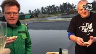 BFB besøger Venøsters hvor vi serverer Østers med Agurkevinaigrette.