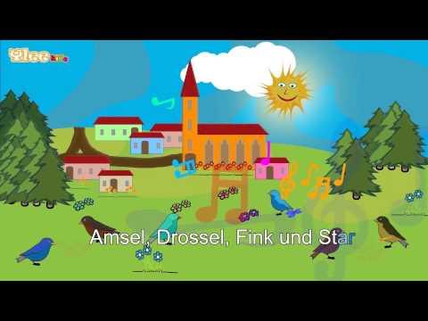 Alle Vögel sind schon da - Deutsch lernen mit Kinderliedern - Yleekids