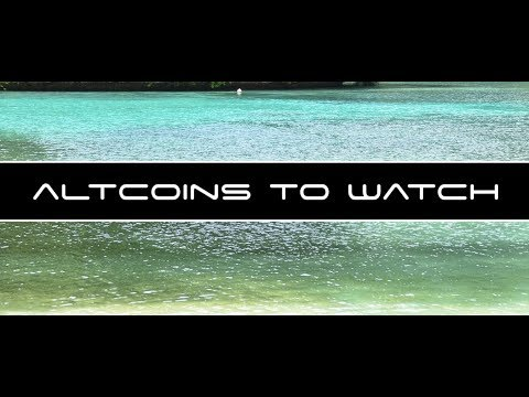 Altcoins To Watch Late Night Analysis