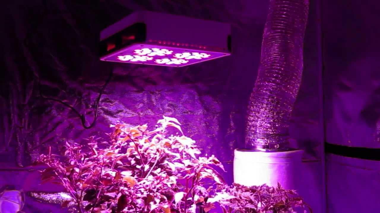 growace com review 180w led advance spectrum max modular grow