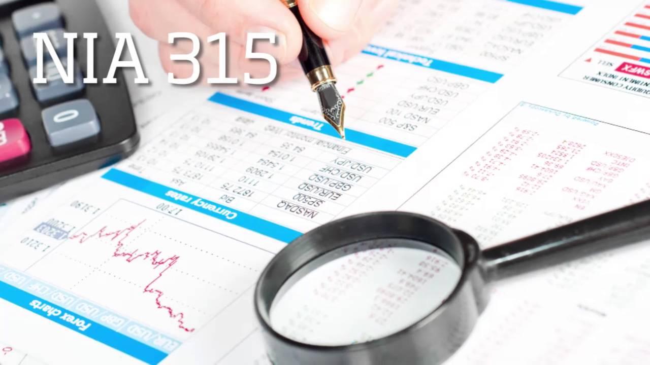 Disposiciones de la nia 315 para identificar y evaluar - Limpiador de errores gratis ...