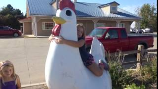 THE BIGGEST CHICKEN IN THE WORLD!!