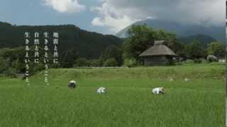 JA共済 建更むてきCM 2011年 この国で生きるということ篇 30秒