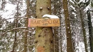 тЕСТ камеры День/Ночь Смартфона Kyocera Duraforce e6560
