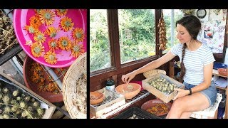Seed Saving, Drying Herbs and Flowers / Homegrown Garden