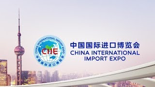 China's first international import expo in the works