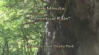 "Park Minute: ""Perpetual Rain"" in Watkins Glen State Park"