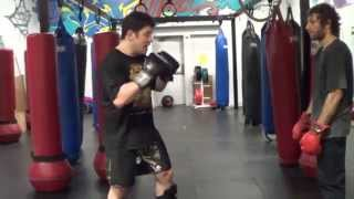 Learn 12 Advanced MMA Muay Thai Kickboxing Combinations Attacks kill the Liver Shot!
