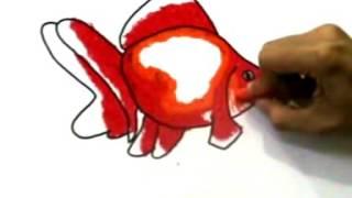 Cara menggambar ikan koki