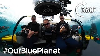 Journey 1000m Below The Waves In 360° #OurBluePlanet - BBC Earth