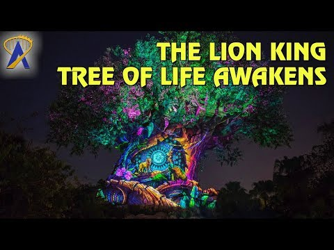 The Lion King Projections On Tree Of Life At Disney S Animal Kingdom Youtube