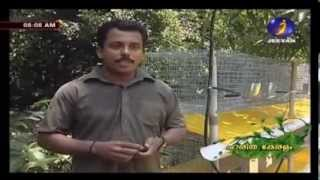 Documentary on Rabbit farming in Kerala Part-1