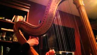 "Pride and Prejudice ""Emma"" played by harpist, Michele Roger"
