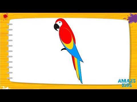 Как красиво раскрасить попугая