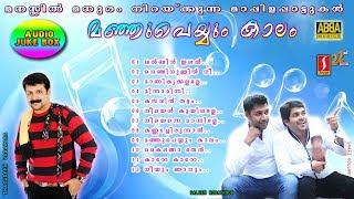 ManjuPeyyum Kaalam |Latest Hit Romantic Mappilapattukal |Selected Super hit Mappila Love Songs