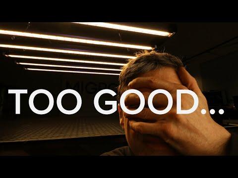 KILLER GROW LIGHT | Lumatek Zeus 600W Pro Review