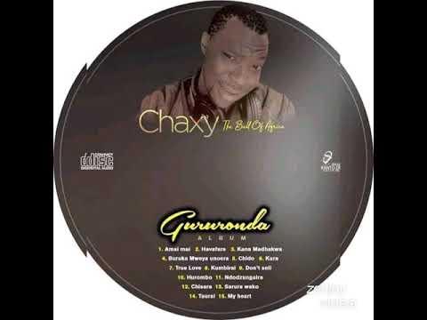 Download Chaxy the bull of africa-Buruka mweya unoera