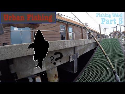 Urban Fishing In Perth | Fishing WA-2 | Part 3